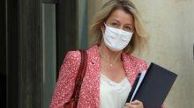 """Néonicotinoïdes : le revirement du gouvernement sur l'interdiction de l'insecticide """"tueur d'abeilles"""" en 6 actes"""
