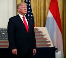 D-Day flag that flew at Normandy landing gifted to US 75 years later. Trump accepts flag from Netherlands PM