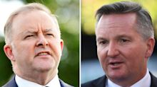Anthony Albanese likely to be Labor leader after Chris Bowen withdraws