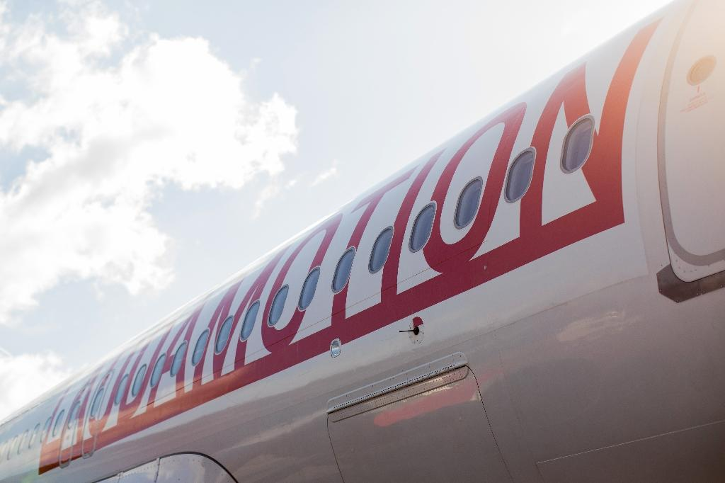 """Laudamotion tweeted that the crew """"decided to abort the take-off due to engine issues and to disembark the passengers on the runway as a precautionary measure"""""""