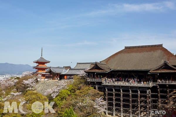 京都的清水寺是大家前往京都賞櫻必去的熱門旅遊景點。