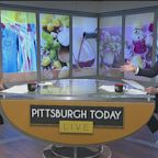 Pittsburgh Today Live Chat: July 9, 2020