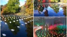 倫敦公園超靚「摺紙船」佈置 倒影似星星夜晚發光