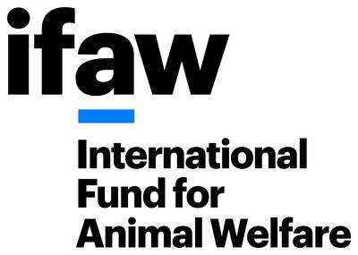 IFAW: Major boost for jaguar conservation as iconic but threatened species is afforded vital protection