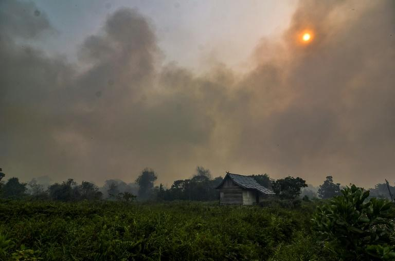 Indonesia and Malaysia have been worst affected by haze from the fires, which are burning on Indonesia's Sumatra island and the Indonesian part of Borneo (AFP Photo/Wahyudi)