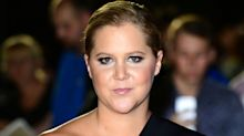 Amy Schumer trolled as 'jealous pig' by royal fans over wedding remarks