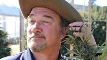Jim Belushi, de estrella de los 90s a granjero de marihuana