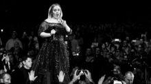 Un escarabajo ataca a Adele en pleno concierto