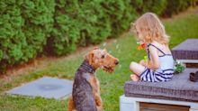 The common mistakes parents make while raising kids around pets