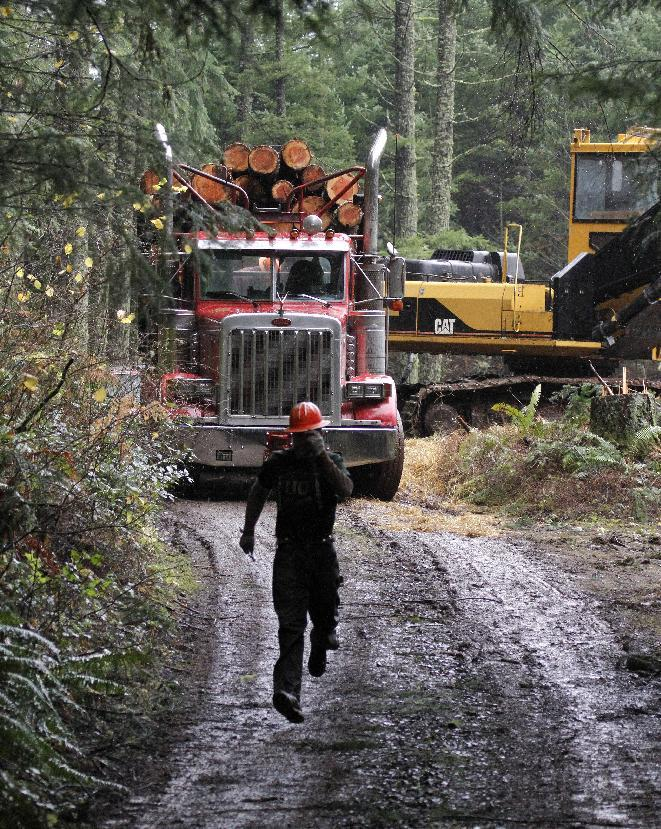 """FILE - In this Nov. 30, 2012, file photo, logger Eric Davis runs down the road as a truck loaded with logs is readied in the forest near Banks, Ore. While the looming fiscal cliff dominates political conversation in Washington, some Republicans and business groups see signs of a """"regulatory cliff"""" they say could be just as damaging to the economy. In recent weeks, the Environmental Protection Agency has proposed rules to scale back mercury emission limits for new power plants and deal with runoff from logging roads. (AP Photo/Don Ryan, File)"""