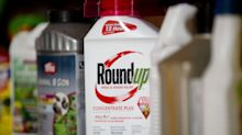 Bayer Isn't Out of the Roundup Woods as 30,000 Claims Remain