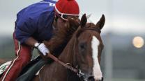 At Belmont, California Chrome Races for History
