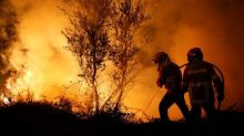 Portugal turns to elite firefighters to avoid repeat of forest fire tragedy