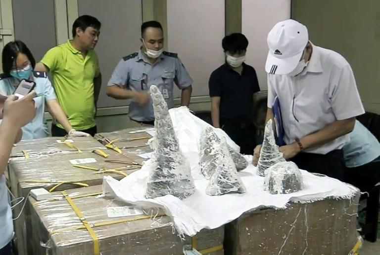 Vietnam seizes 55 pieces of rhino horn hidden in plaster