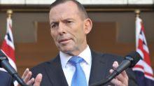 Tony Abbott board of trade appointment raises concern in Australia