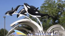 Stock awards for SeaWorld execs, despite furloughed staff