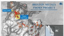 Brixton Metals Discovers Visible Gold at Surface Above a Large Geophysical Feature at the Thorn Project's Trapper Gold Target