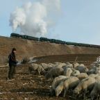 The bubonic plague has been found at a hospital in China's Inner Mongolia region