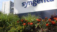 Syngenta, in 2019 vendite a 13,6 mld dlr (+4%)
