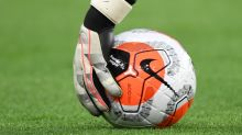 Premier League to review takeover bid rules