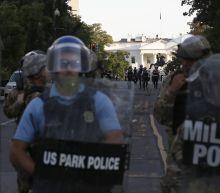 AP PHOTOS: A jarring scene in park near White House