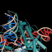 Chinese Scientists Will Use CRISPR Gene Editing on Humans for the First Time