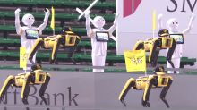 Watch Spot and Pepper robots come together to cheer their baseball team