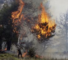 The Latest: Forest fire threatens homes on Greek island