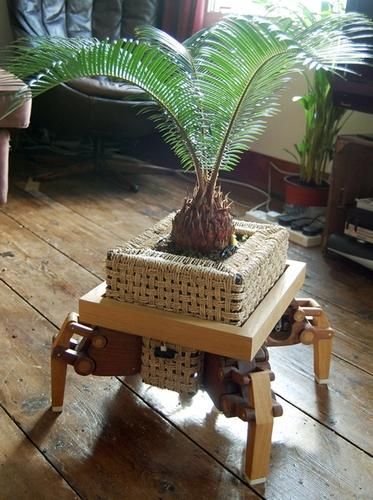 PlantBot takes your flora in search of sun (and fun!)