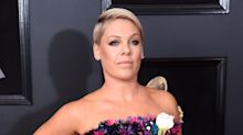 Pink had the best response to a troll who said she 'looks so old'