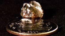 EEUU: Gerente bancario descubre diamante en parque estatal