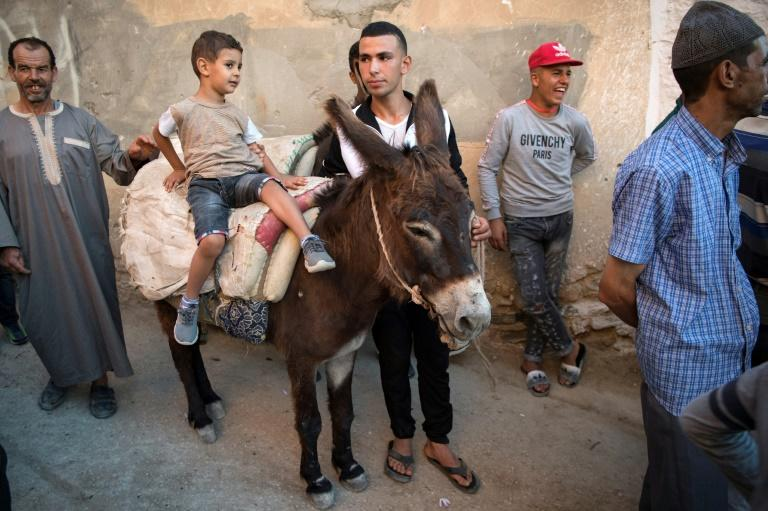 Cleopatra' wows Morocco village at donkey pageant