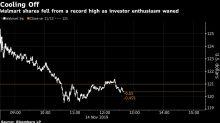 Walmart Retreats From Record as Investors Poke Holes in Earnings