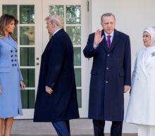 Trump hosts Turkish President Erdogan at White House despite criticism on Syria