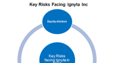 Ignyta and Its Key Risks in 2018