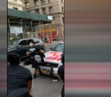 WARNING, GRAPHIC LANGUAGE: Protesters pose for pictures with vandalized NYC Sheriff squad car