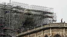 Obras de cobertura da catedral de Notre-Dame começam