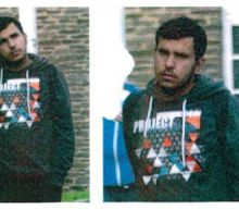 Germany urged to honour Syrian bomb plot 'heroes'