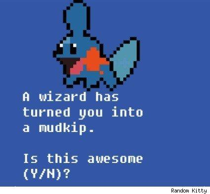 MMO! Pokemon does not choose you