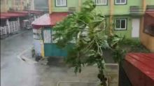 Calapan City Battered by High Winds From Typhoon Kammuri