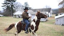 Roy Moore's horse, Sassy, wins the internet on Alabama senate race Election Day