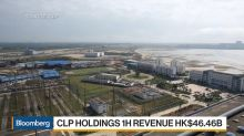 CLP Is 'Reasonably Well Protected' From Trade Disputes, CEO Says