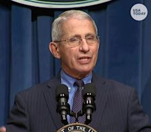 Dr. Anthony Fauci warns US is 'knee-deep' in first wave of coronavirus cases and prognosis is 'really not good'