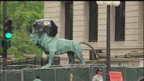 Art Institute of Chicago lions showing Blackhawks pride