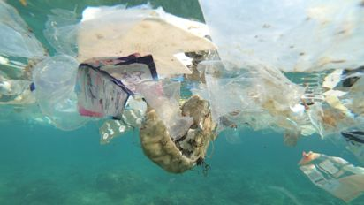 Tax on 'bad plastic' expected to be signed off by Government to boost recycling