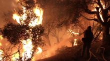 California's Thomas Fire Grows, Triggers New Evacuations
