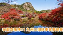 玩厭京阪神?! 九州三個秋季賞楓絕景