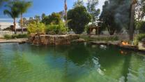 'The Pool Master ': Time Lapse: Japanese Water Garden