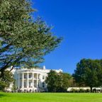 The best respite from politics is at the White House