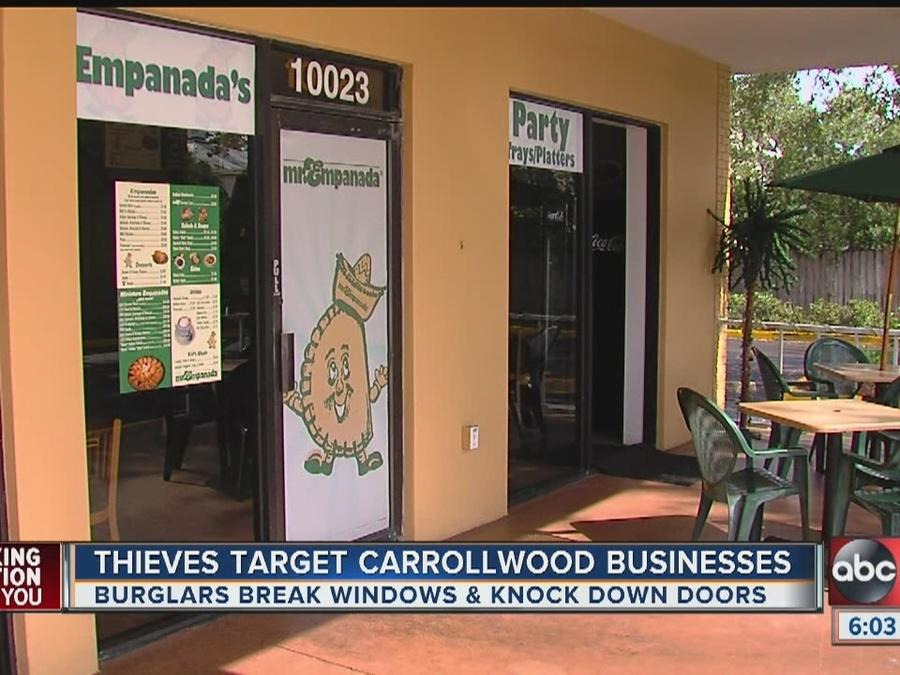 Thieves Target Carrollwood Businesses [Video]